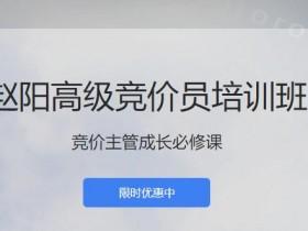 厚昌赵阳sem29期竞价教程培训学院视频课程(完结)价值4588元