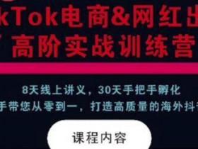 TikTok电商&网红出海高阶实战训练营:30天手把手孵化,打造高质量海外抖音账号