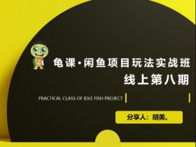 宅男:闲鱼项目玩法实战班·第8期(第1节)市场分析及准备细节,选品/多种变现玩法