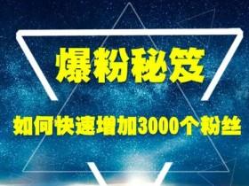 王通《爆粉秘笈》如何快速增加3000个精准粉丝