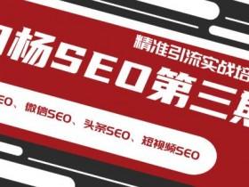 白杨SEO第三期精准引流实战培训(百度SEO、微信SEO、头条SEO、短视频SEO)