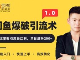 九京闲鱼爆品引流技术1.0,掌握引流新红利,单日进粉200+ 无水印(价值1500元)