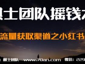 麒士团队摇钱术30:精准流量获取渠道之小红书引流【视频课程】