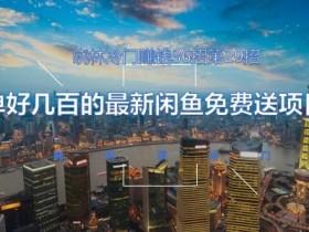 晓林冷门赚钱36招第29招一单好几百的最新闲鱼免费送项目【视频课程】