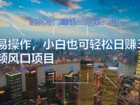 晓林冷门赚钱36招第30招简单易操作,小白也可轻松日赚300的短视频风口项目【视频课程】