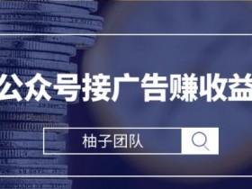 微信公众号接广告赚收益项目,新手零基础也能操作月入万元【视频课程】