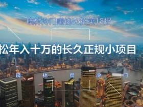 晓林冷门赚钱36招第18招轻松年入十万的长久正规小项目【视频课程】