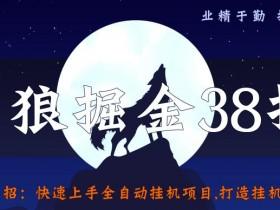 侠狼掘金38招第15招快速上手全自动挂机项目,打造挂机工作室【视频课程】