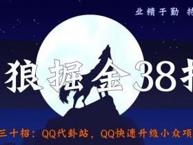 侠狼掘金38招第30招QQ代卦站,QQ快速升级小众项目【视频课程】