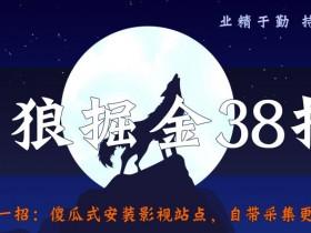 侠狼掘金38招第31招傻瓜式安装影视站点,自带采集更新功能【视频课程】
