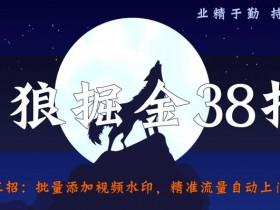 侠狼掘金38招第33招批量添加视频水印,精准流量自动上门寻找【视频课程】