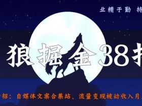 侠狼掘金38招第34招自媒体文案合集站,流量变现被动收入月入5000+【视频课程】