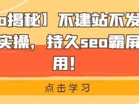 【黑帽seo揭秘】不建站不发帖做外推排名方法实操,持久seo霸屏,灰白通用!
