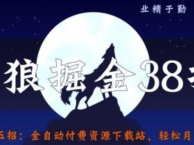 侠狼掘金38招第25招全自动付费资源下载站,轻松月入3w+【视频课程】