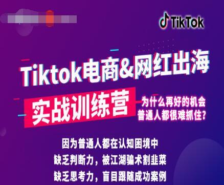 0基础学习抖音国际版TikTok海外短视频新手实战训练营【视频课】