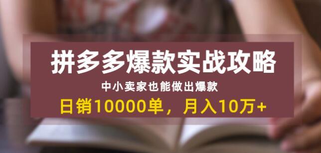 拼多多爆款实战攻略:中小卖家也能做出爆款,日销10000单月入10w+