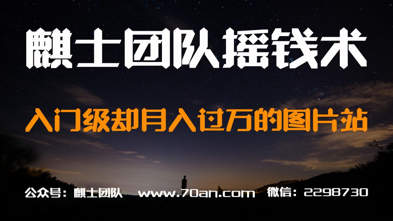 麒士团队摇钱术14:入门级却月入过万的图片站【视频课程】