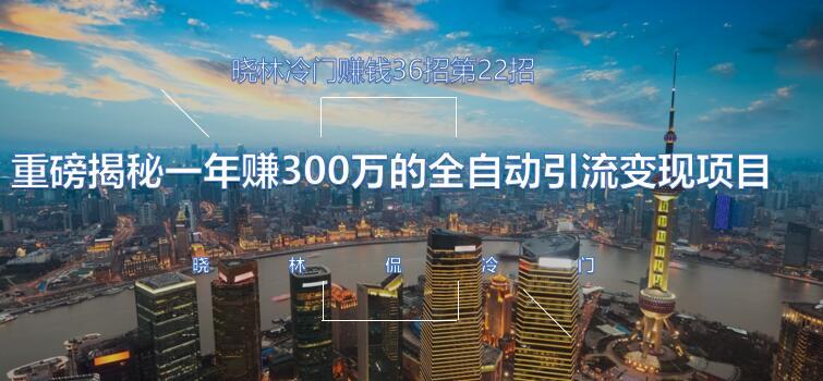 晓林冷门赚钱36招第22招重磅揭秘一年赚300万的全自动引流变现项目【视频课程】