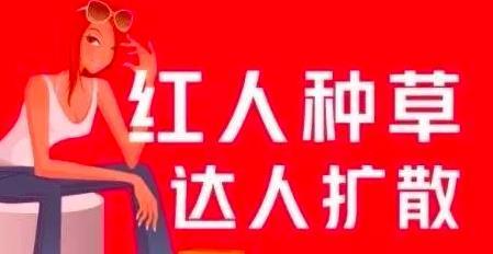 上班族月入6000+小红书引流赚钱副业项目,拆解视频号简单粗暴玩法!