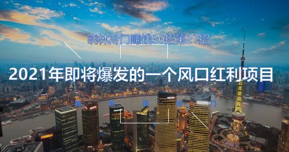 晓林冷门赚钱36招第27招2021年即将爆发的一个风口红利项目【视频课程】