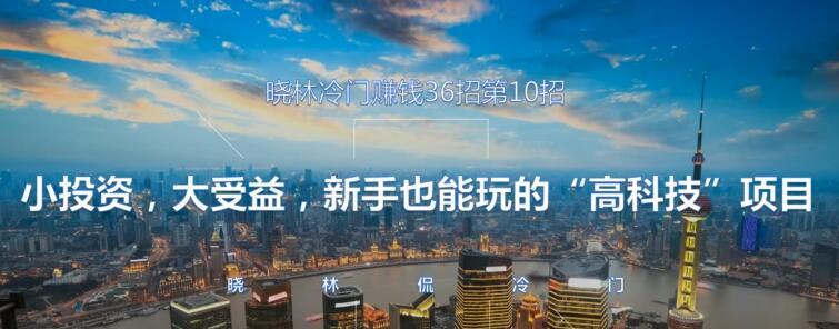 """晓林冷门赚钱36招第10招小投资,大受益,新手也能玩的""""高科技""""项目【视频课程】"""