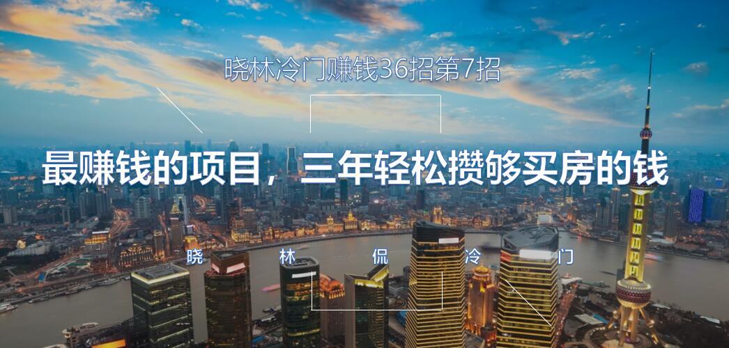 晓林冷门赚钱36招第7招最赚钱的项目,三年轻松攒够买房的钱【视频课程】