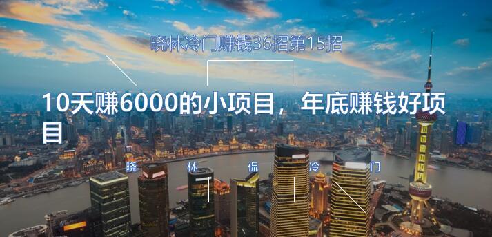 晓林冷门赚钱36招第15招10天赚6000的小项目,年底赚钱好项目【视频课程】
