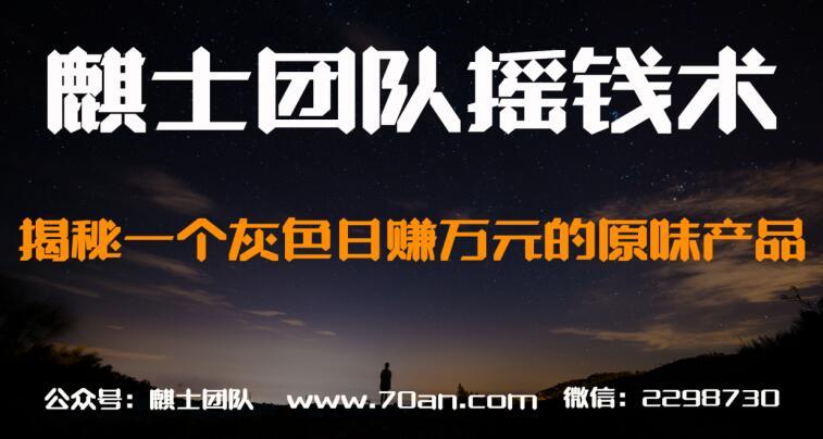 麒士团队摇钱术24:揭秘一个灰色日赚万元的原味产品【视频课程】