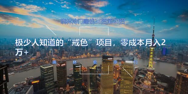 晓林冷门赚钱36招第20招极少人知道的戒色项目,零成本月入2万+【视频课程】