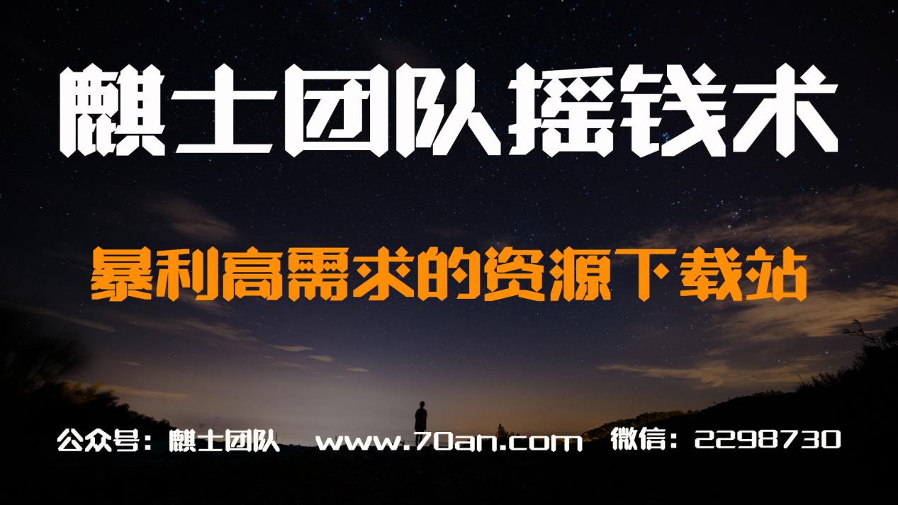 麒士团队摇钱术13:暴利高需求的资源下载站【视频教程】