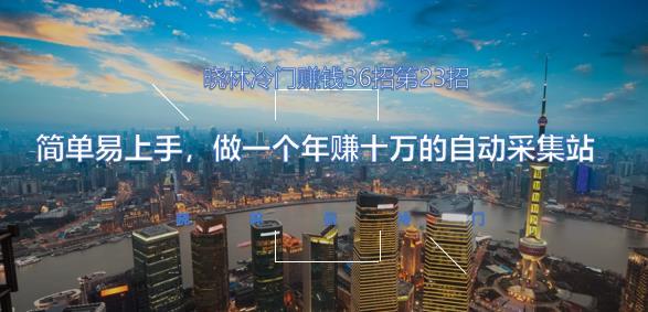 晓林冷门赚钱36招第23招简单易上手,做一个年赚十万的自动采集站【视频课程】