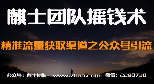 麒士团队摇钱术29:精准流量获取渠道之公众号引流【视频课程】