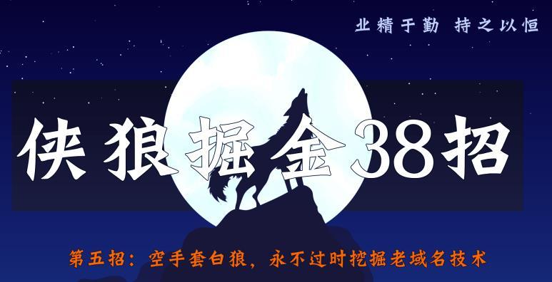侠狼掘金38招第5招空手套白狼,永不过时挖掘老域名技术【视频课程】