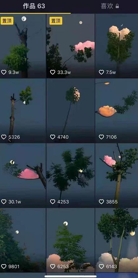 树段最新短视频技术,轻松破千万播放量价值1888【视频课程】